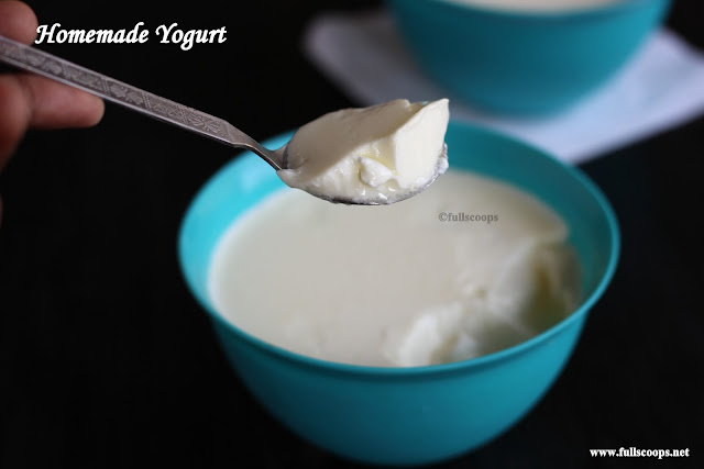 How to make thick curd