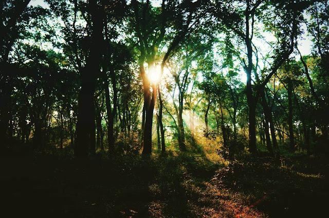 foto sunrise di alas kethu wonogiri