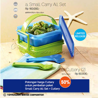 Small Carry All Set Promo Tupperware April 2016