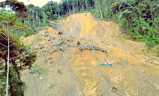 Kabupaten Pegunungan Arfak Butuh Rp269 Miliar Pulihkan Bencana