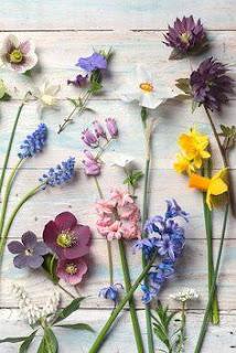 صور زهور رومانسية 2017