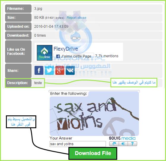 شرح لكل جوانب موقع Flexydrive للربح عن طريق نشر روابطك