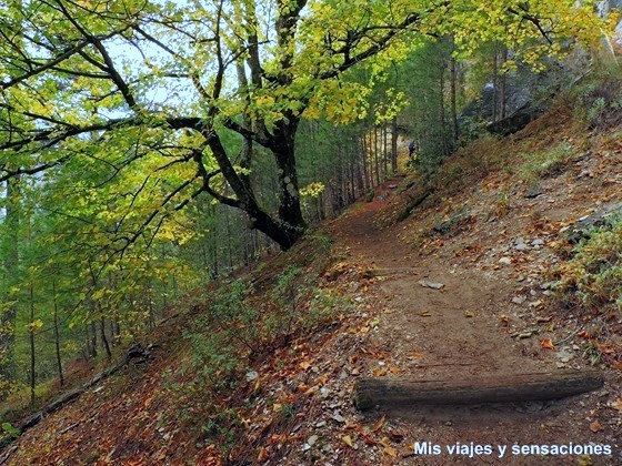Paseo botánico, Monumento Natural de la Hoz de Beteta, Cuenca