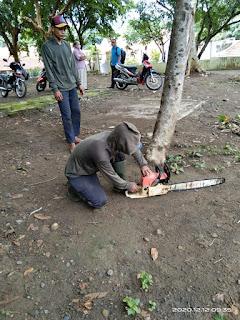 memotong kayu