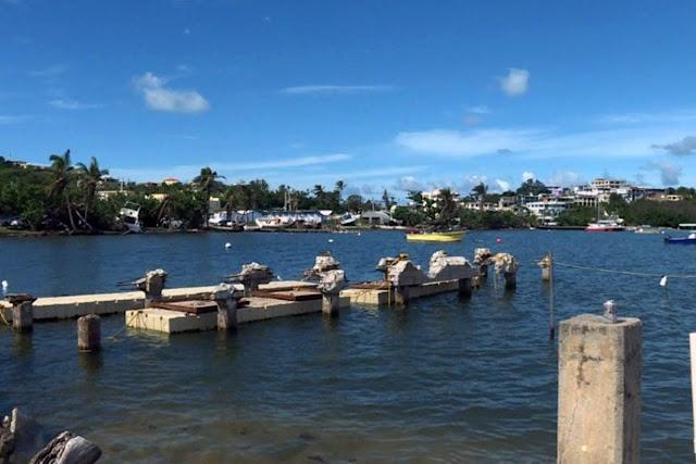 """Puertorriqueños piden auxilio a los turistas: """"Estamos tratando de sobrevivir"""""""
