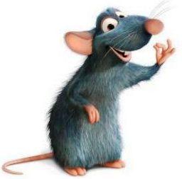 Sensores de robots con bigotes de ratas?