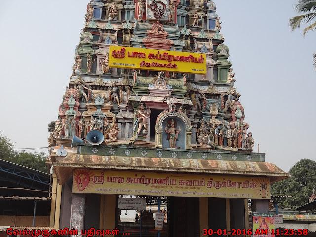 Bala subramaniyar Temple Siruvapuri