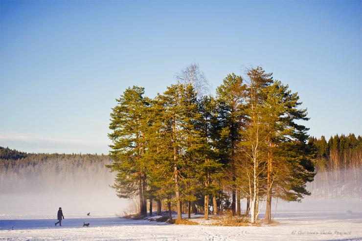 Sognsvann, invierno en Oslo por El Guisante Verde Project
