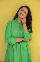 Geethanjali in Green Dress at Mixture Potlam Movie Pressmeet March 2017 004.JPG
