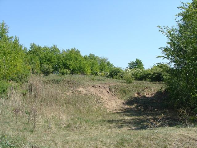 Wczesnośredniowieczne grodzisko w Górze