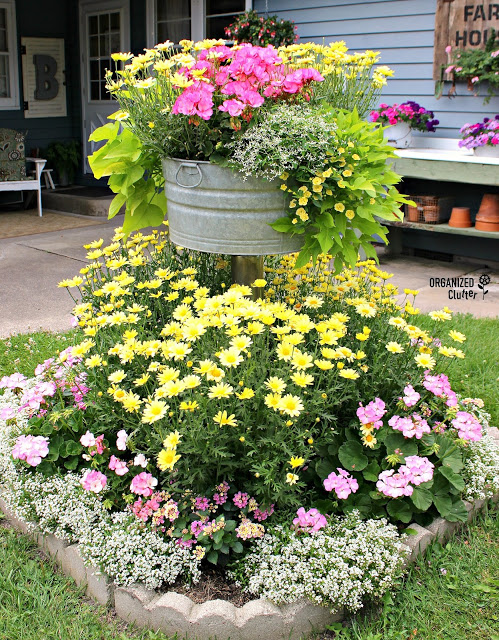 Junk Garden Tour & Garden Video #gardentour #junkgarden #gardenjunk #flowergarden #annuals #perennials