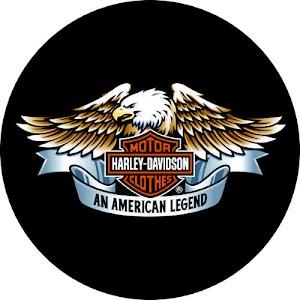 Cover Ban Harley Davidson No. 5