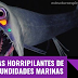 4 criaturas horripilantes que albergan las profundidades marinas
