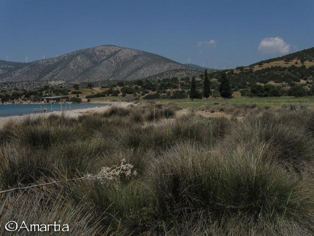 Salanti Argolide Peloponnese Grèce