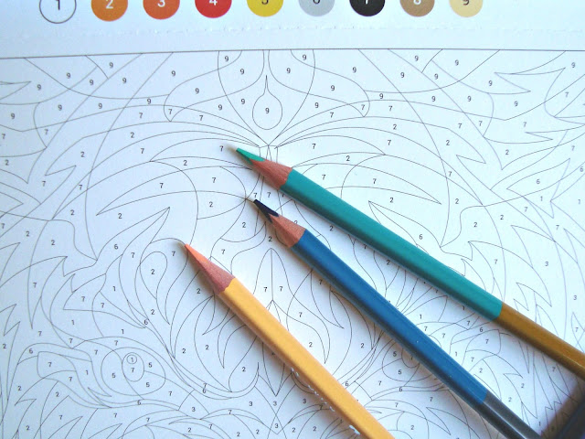 Sposób na odstresowanie. Kolorowanka antystresowa dla dorosłych. Jak przestać się stresować. Kolorowe kredki.