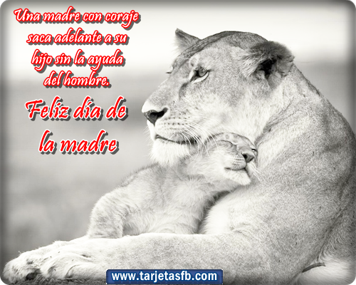 1000+ Ideas About Madre Soltera Frases On Pinterest