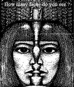 Bạn nhìn thấy bao nhiêu khuôn mặt ? Thử trí thông minh phần 4 - How many faces do you see ?