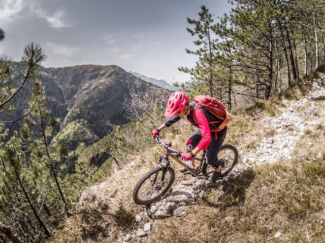 Trail Downhill Monte Jama