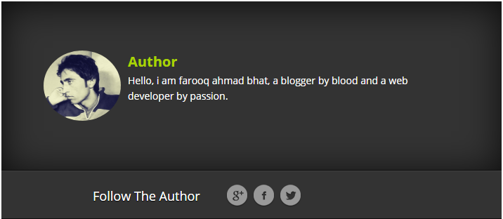Author Bio Box for Blogger Blogs