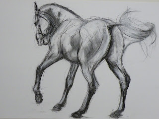 charcoal drawing equestrian art, charcoal horse drawing, equine art scotland UK