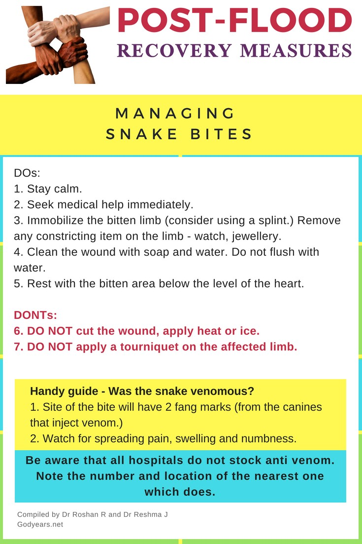 Steps to take following a snake bite