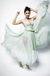 Priyanka Chopra in a deep neck transparent gown for New York Post fashion section Alexa