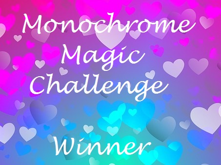 Chosen Winner at Monochrome Magic
