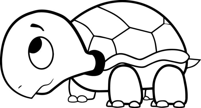 for Cute turtle coloring pages