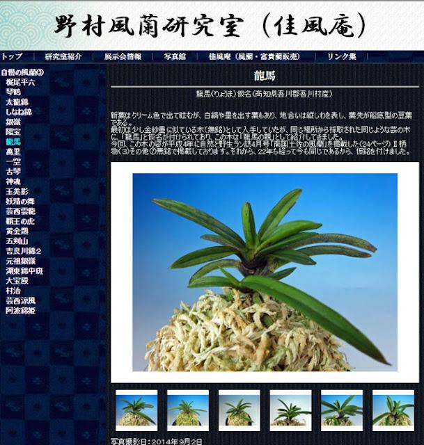 http://www.fuuran.jp/jiman_ryouma.html