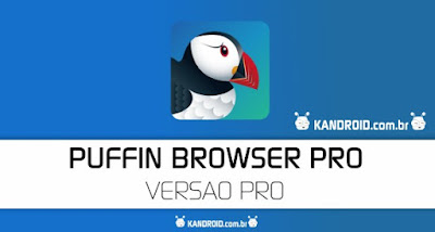 Puffin Browser Pro Apk For Android (Paid)