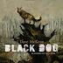 [News] Dave McKean vem ao Brasil a convite da Darkside Books para lançar sua HQ, ´´Black Dog´´