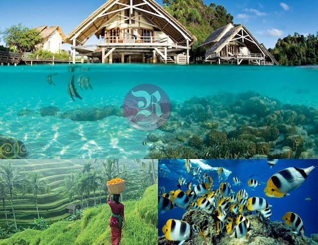Keindahan Wisata Bawah Laut