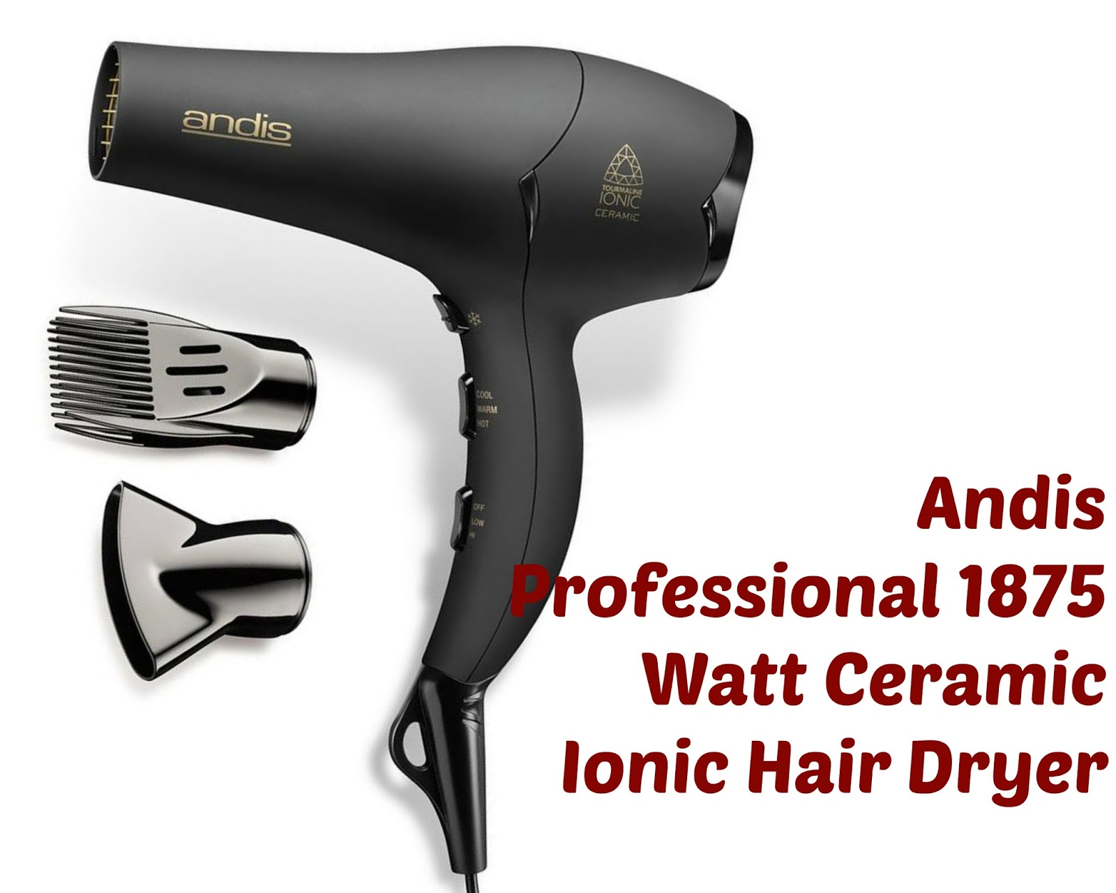 Click her to buy Andis Professional 1875 Watt Ceramic Ionic Hair Dryer for perfect straight hair.