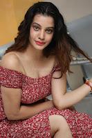 Diksha Panth in a Deep neck Short dress at Maya Mall pre release function ~ Celebrities Exclusive Galleries 123.JPG