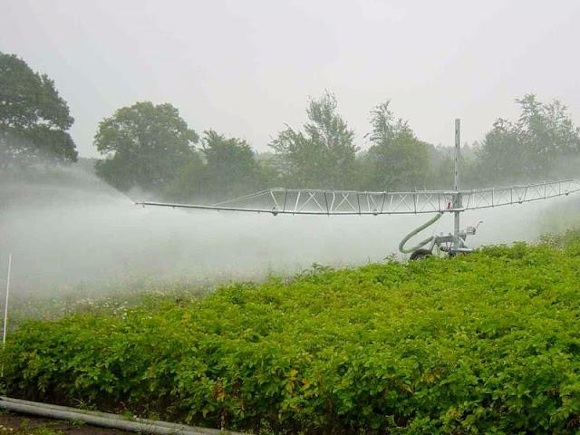 Современные информационные технологии в сельском хозяйстве: опыт других стран!