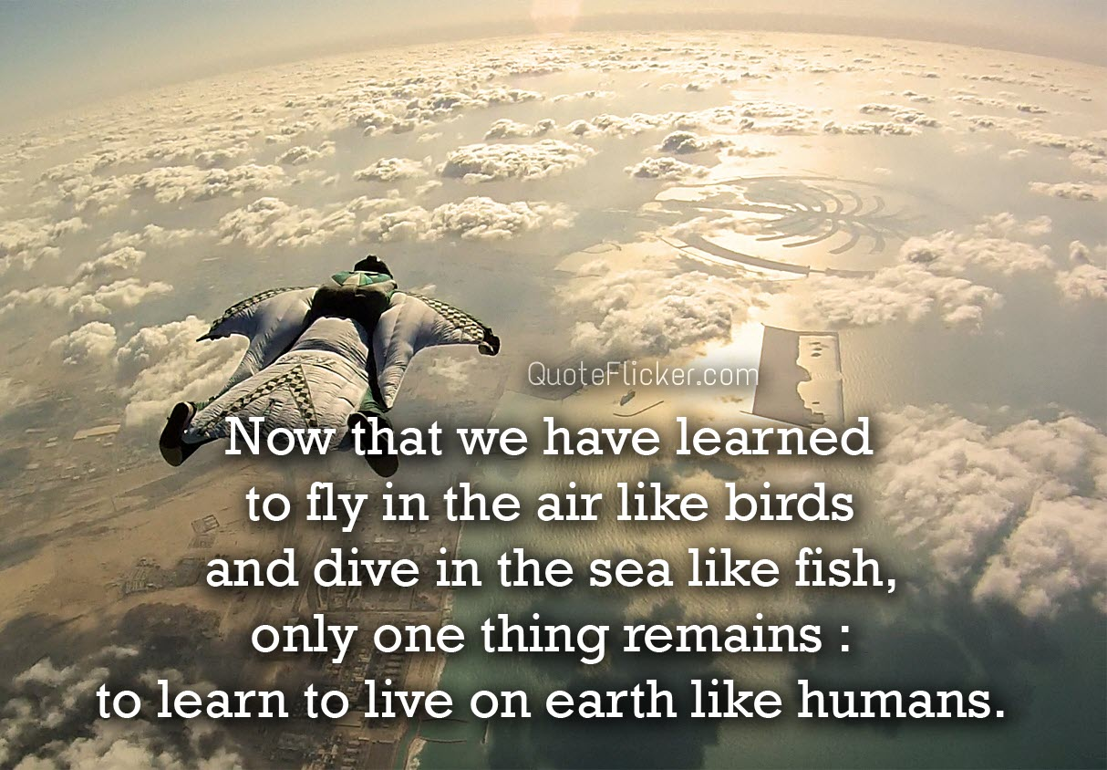 Quotes Collection Learn To Live On Earth  Quotes Collection