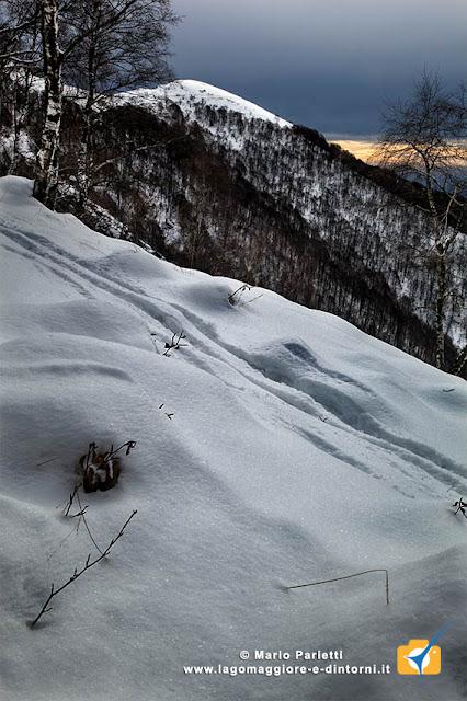 Salendo al monte Lema