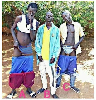 Photo Of The Day: Whose Brothers Are These?