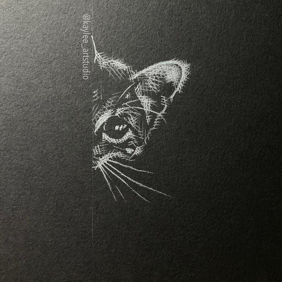 05-Curious-Shy-Kitten-Kay-Lee-Drawings-www-designstack-co