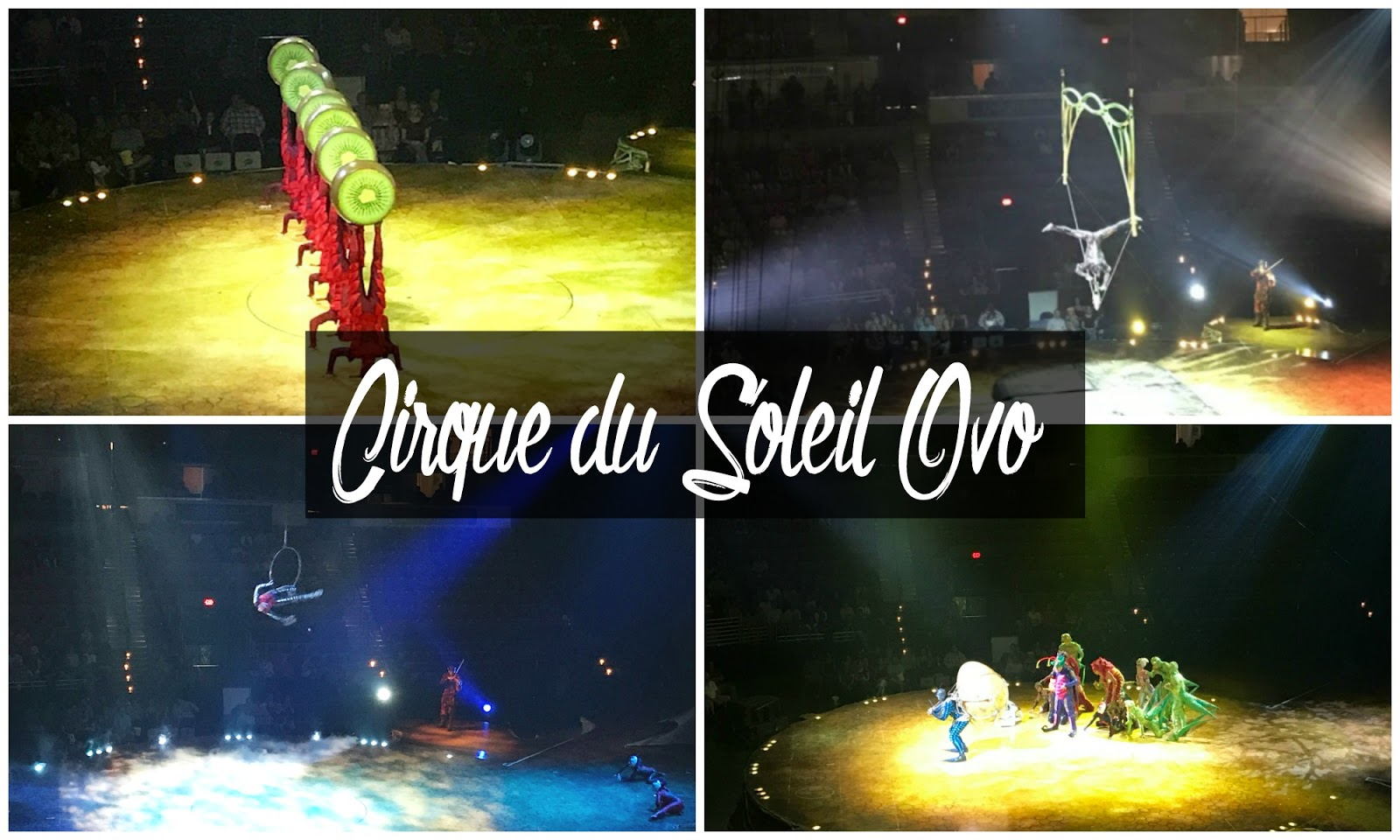 Magical, Whimsical, and Inspiring: Cirque du Soleil Ovo Review