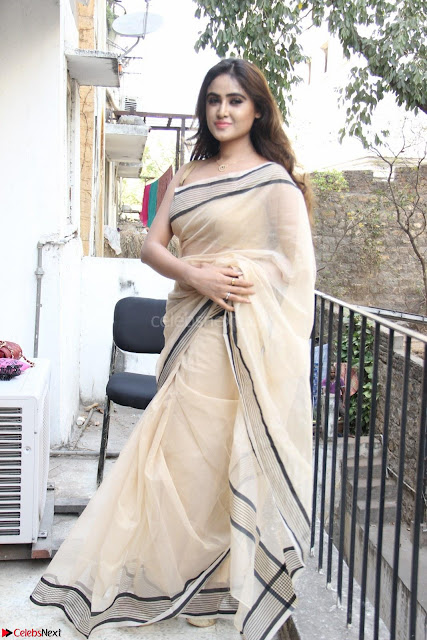 Sony Charishta in Brown saree Cute Beauty   IMG 3582 1600x1067.JPG