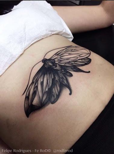 Este sombreado mariposa