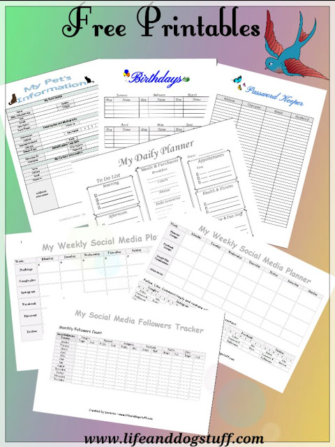Organizing My Life plus FREE Printables.