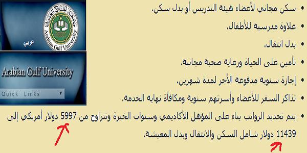 سلطنة عمان وظائف أكاديمية شاغرة بجامعة الخليج العربي