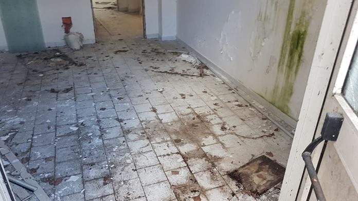 Topi nella scuola a Trecase - La denuncia del consigliere Gerardo Grieco