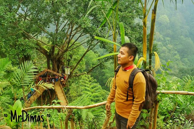 batang - rumah pohon batang - mrdimas - dimas anom pambudi - dimas
