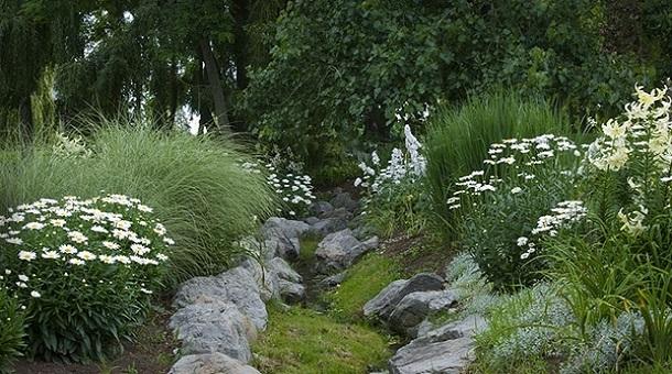 Как посадить цветы в саду