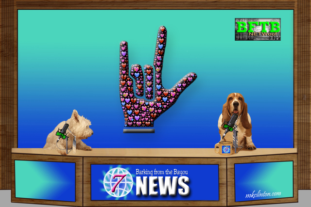 "BFTB NETWoof News with ""I love you"" sign language"