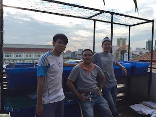 he-thong-aquaponic-5-khay-100l