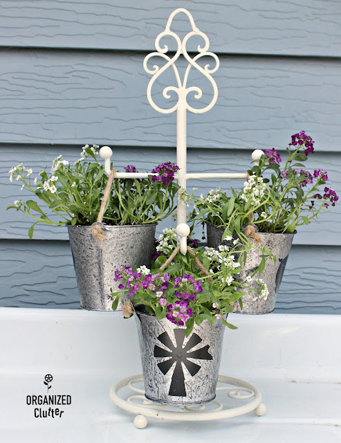 Thrifted Mug Tree Repurposed As Plant Holder #farmhouse #containergarden #sweetalyssum #galvanized